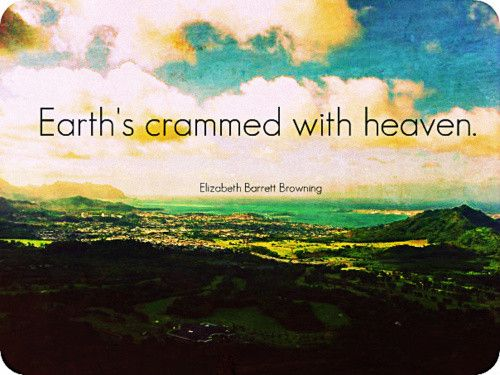 earth's crammed with heaven
