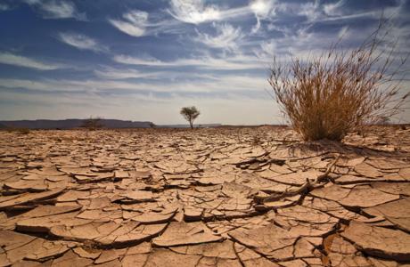 dry_desert-1221